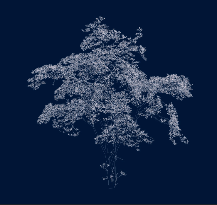 Andrew Millner, 'Blue Dogwood', 2016, Light jet print (ed. of 12), 48x51 in.