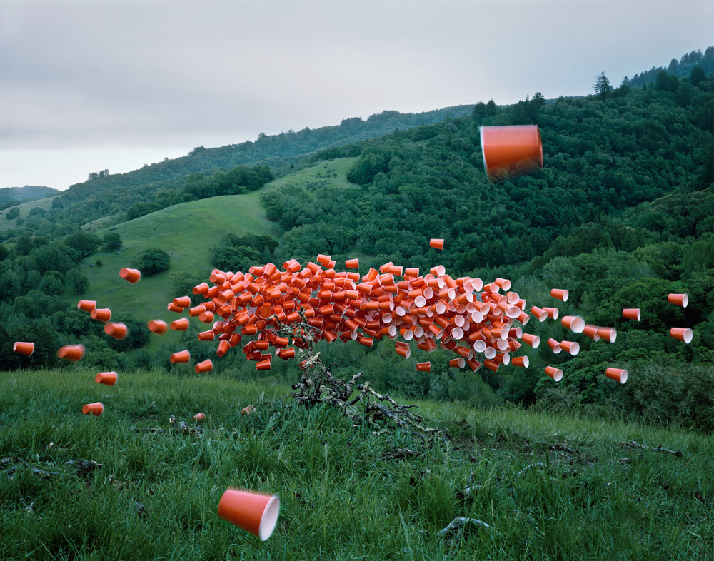 Thomas Jackson, 'Cups No. 3', Novato, California, Archival Pigment Print, 2014