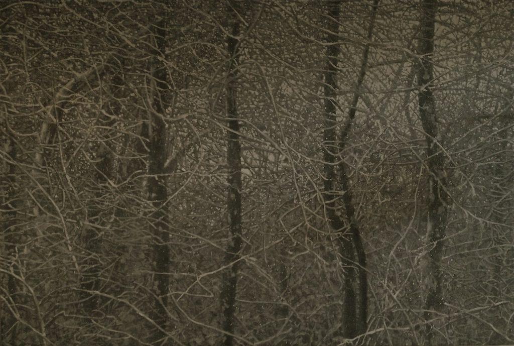 William Ciccariello, 'Dark Snow', 2013, Oil on board, 40 x 60 in.